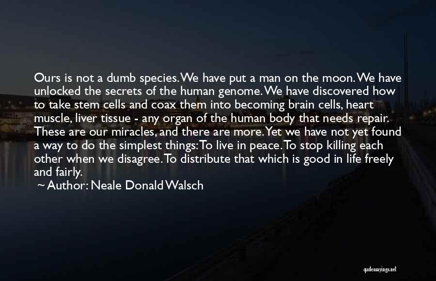 Live Freely Quotes By Neale Donald Walsch