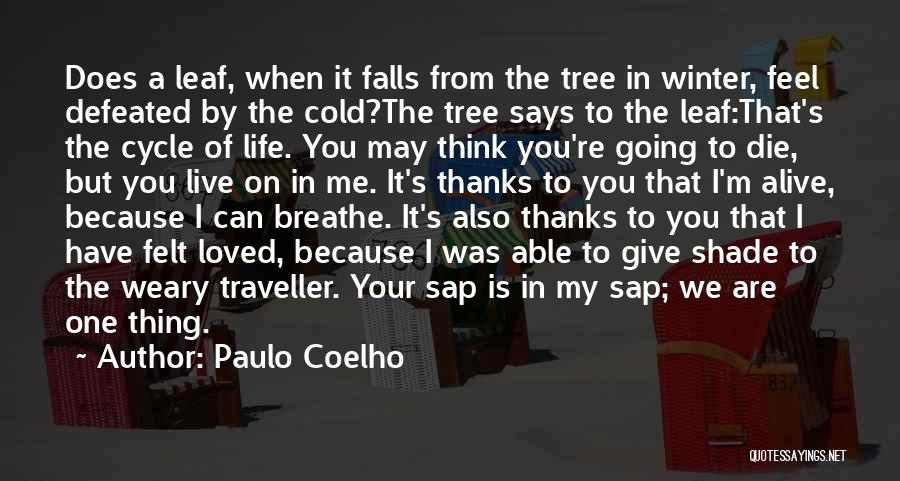Live Life Love Quotes By Paulo Coelho