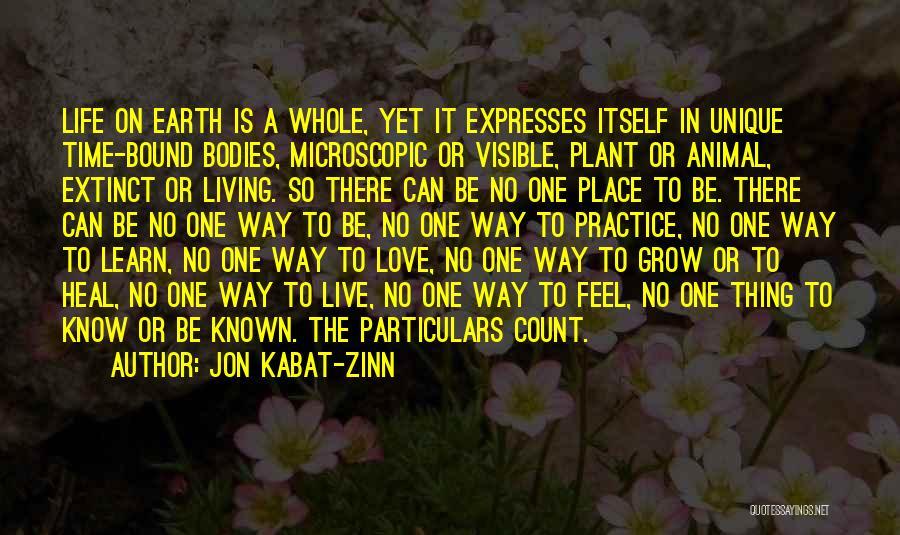 Living A Unique Life Quotes By Jon Kabat-Zinn