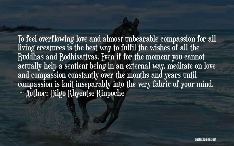 Living Creatures Quotes By Dilgo Khyentse Rinpoche