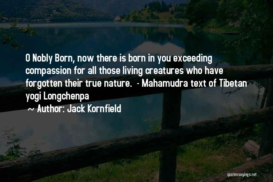 Living Creatures Quotes By Jack Kornfield