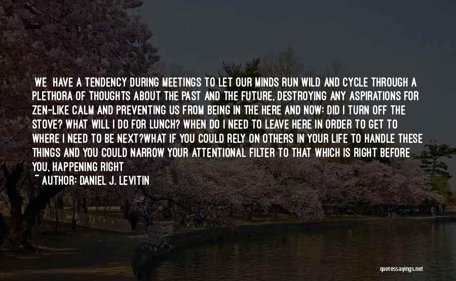 Living Life Right Quotes By Daniel J. Levitin