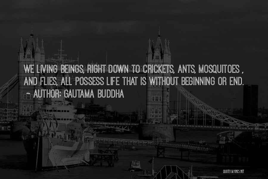 Living Life Right Quotes By Gautama Buddha