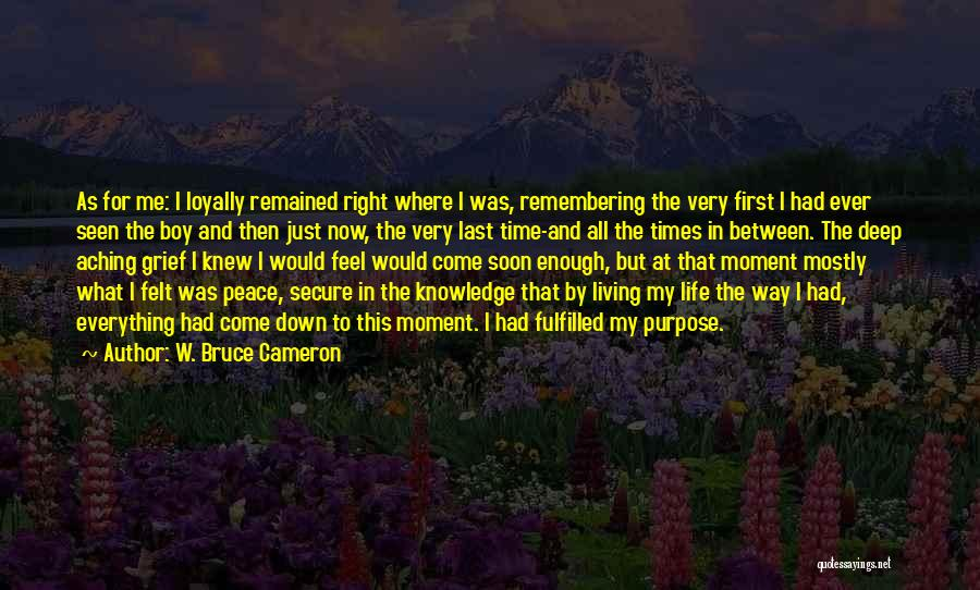Living Life Right Quotes By W. Bruce Cameron