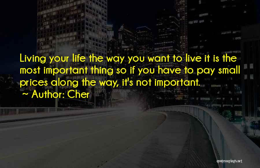 Living Life Your Way Quotes By Cher