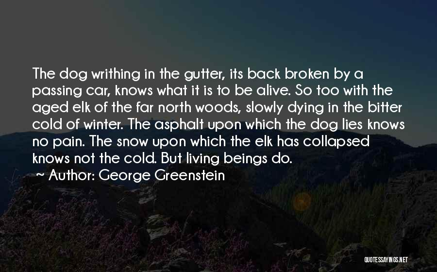 Living While You're Alive Quotes By George Greenstein