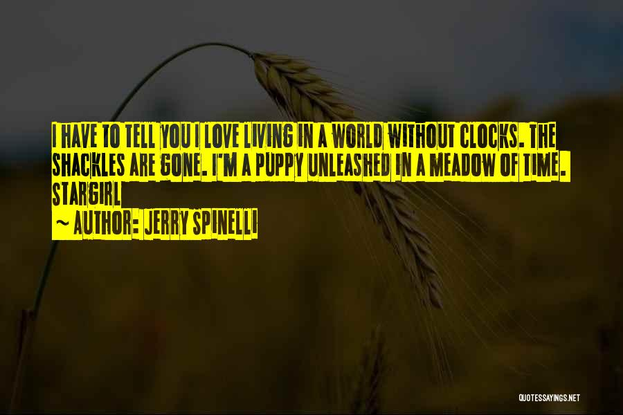Living Without You Quotes By Jerry Spinelli