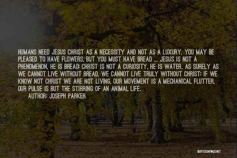 Living Without You Quotes By Joseph Parker