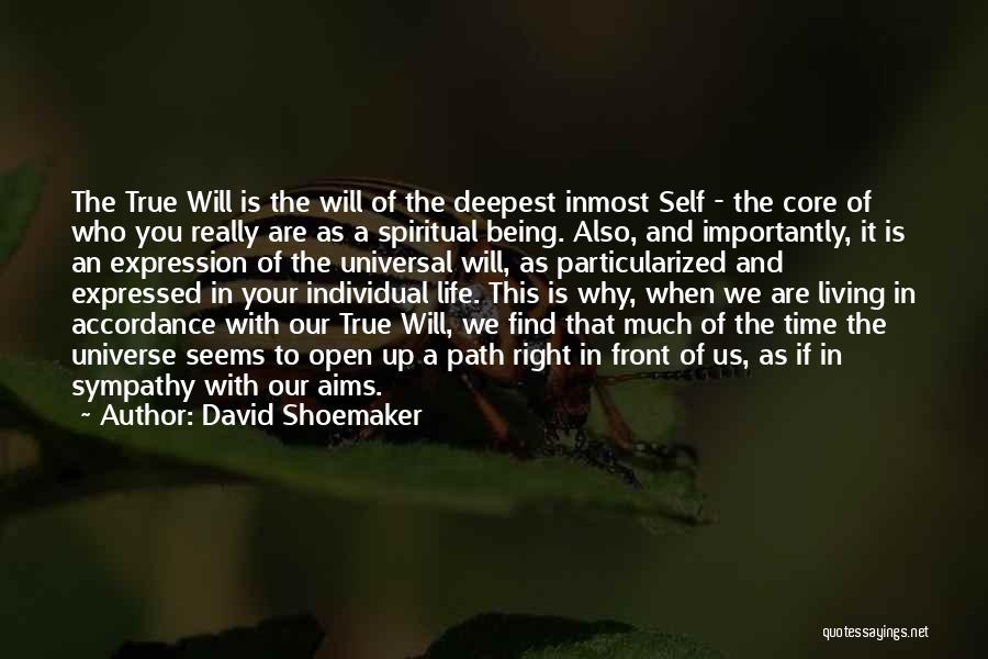Living Your True Life Quotes By David Shoemaker