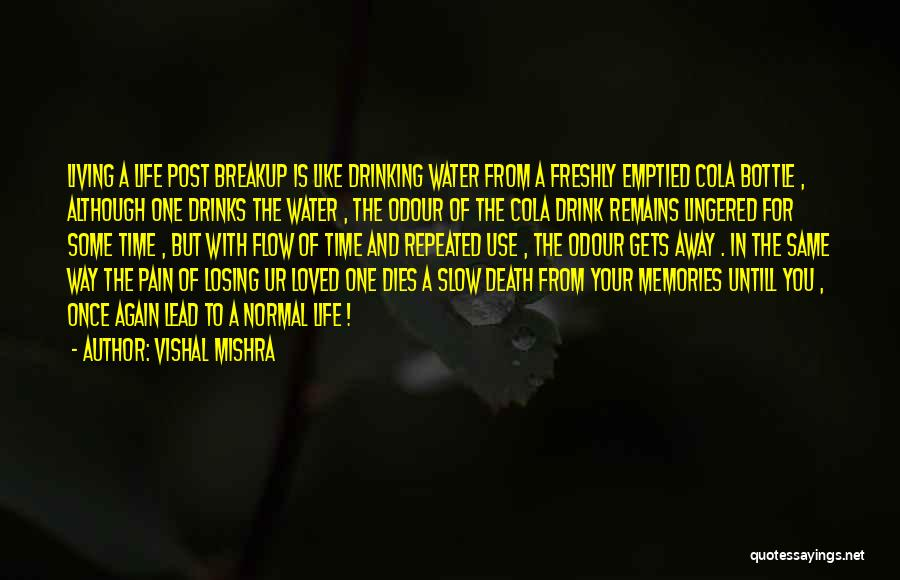 Living Your True Life Quotes By Vishal Mishra