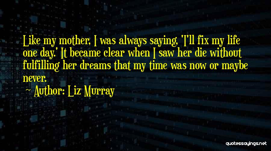 Liz Murray Quotes 2046170