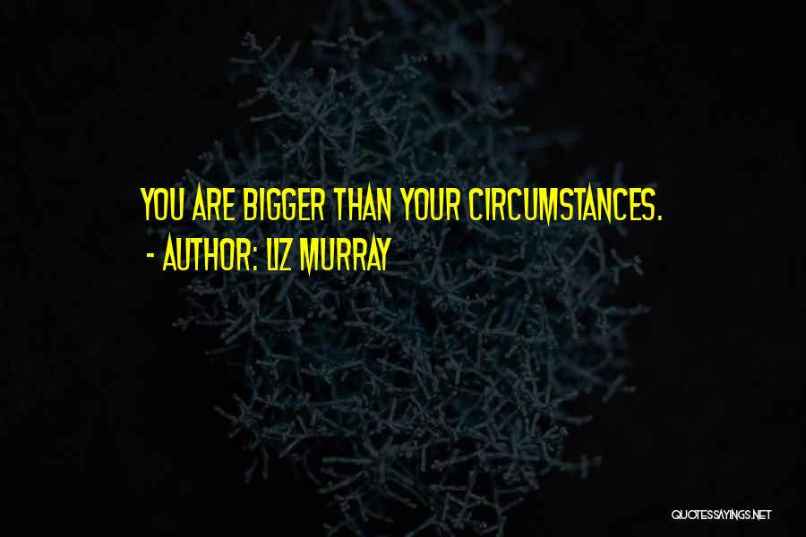 Liz Murray Quotes 450140