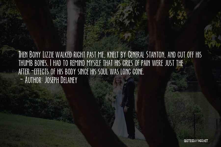 Lizzie Stanton Quotes By Joseph Delaney