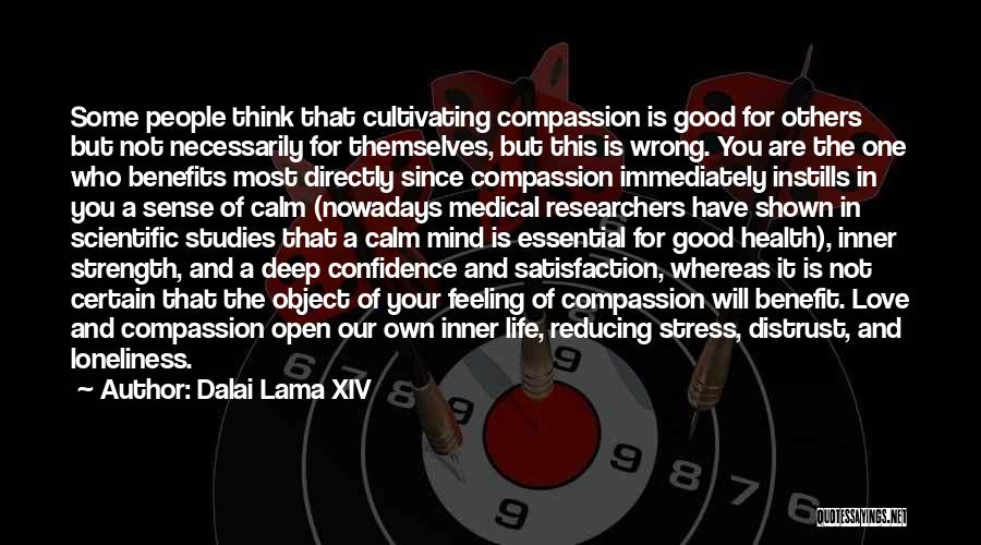 Loneliness And Strength Quotes By Dalai Lama XIV