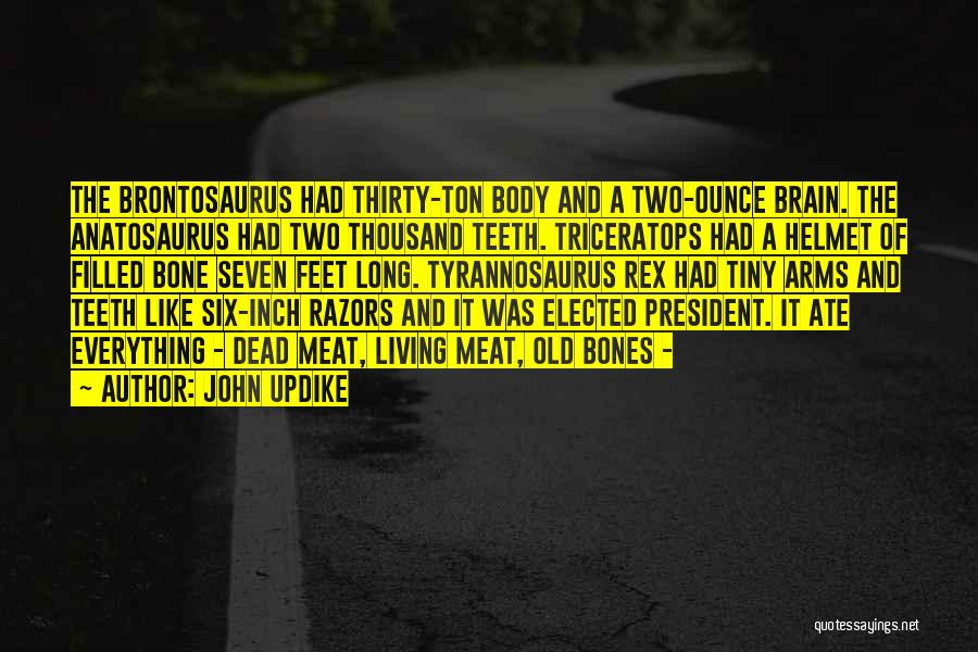 Long Arms Quotes By John Updike