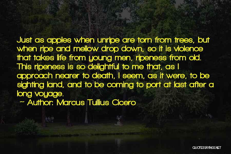 Long Life And Death Quotes By Marcus Tullius Cicero