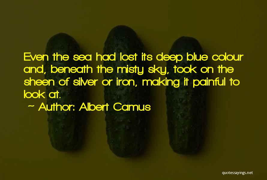 Look At Sea Quotes By Albert Camus