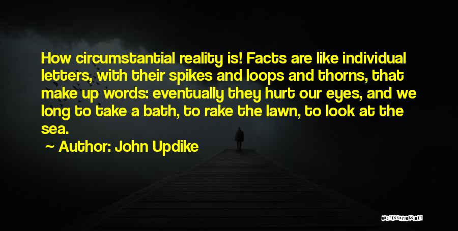 Look At Sea Quotes By John Updike