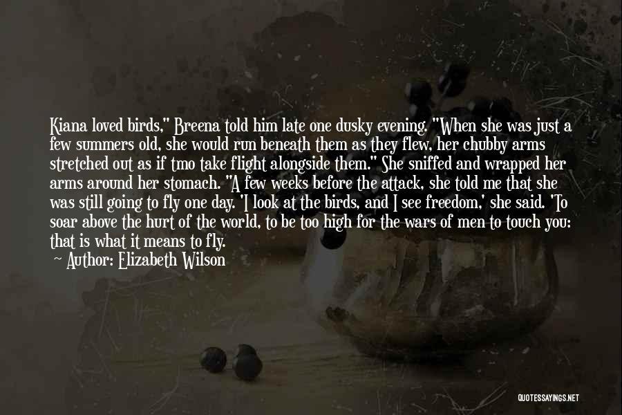 Look Beneath Quotes By Elizabeth Wilson