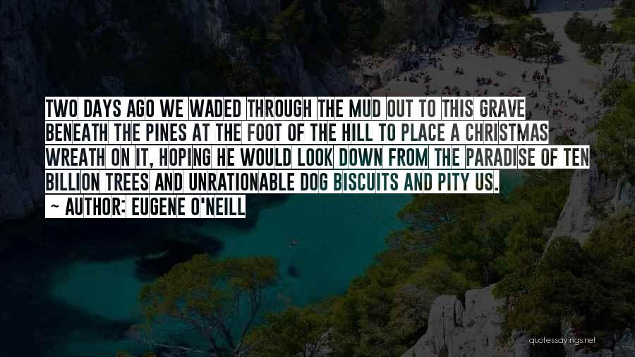 Look Beneath Quotes By Eugene O'Neill