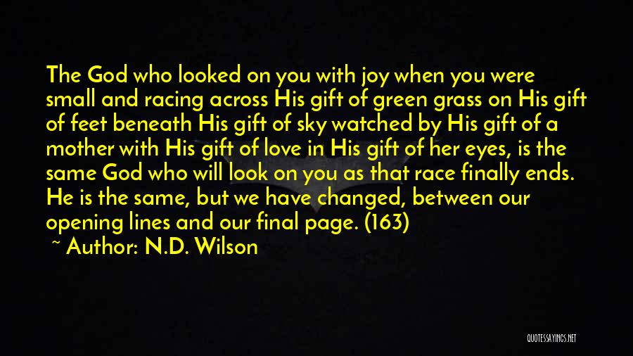 Look Beneath Quotes By N.D. Wilson