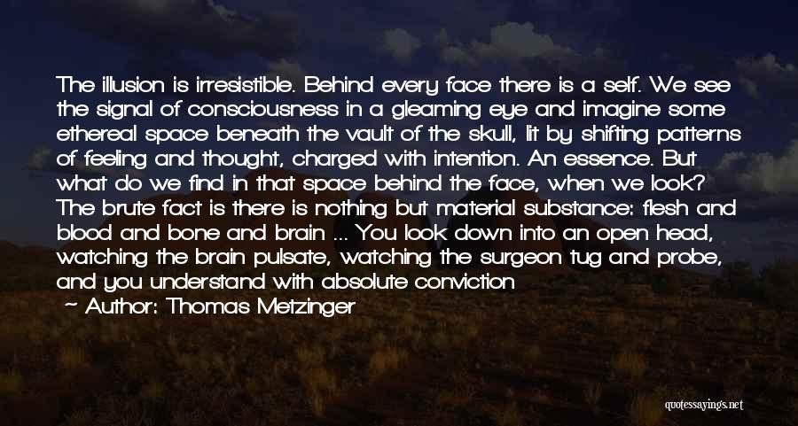 Look Beneath Quotes By Thomas Metzinger