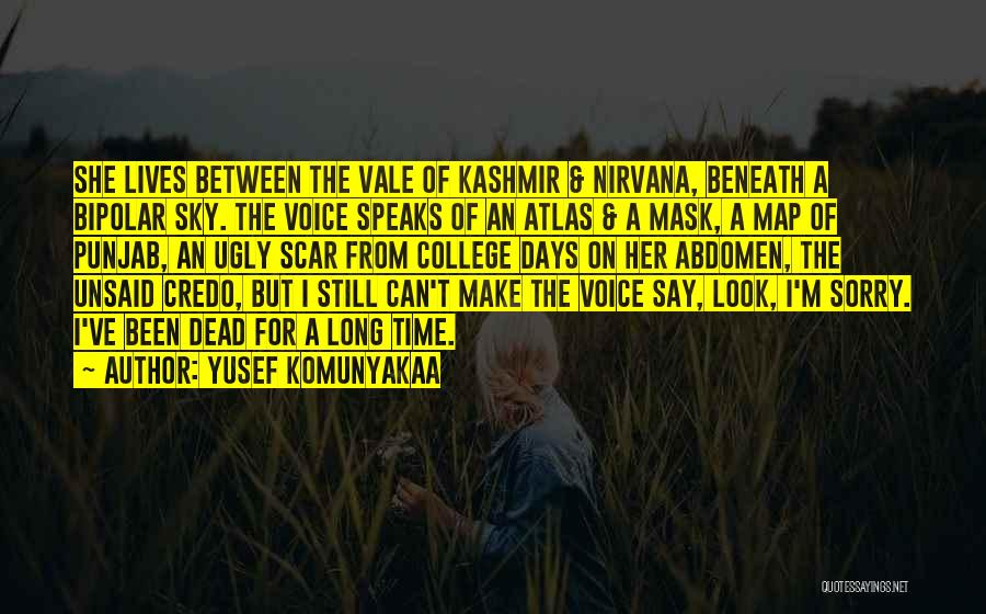 Look Beneath Quotes By Yusef Komunyakaa