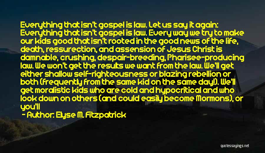 Look For Good In Others Quotes By Elyse M. Fitzpatrick