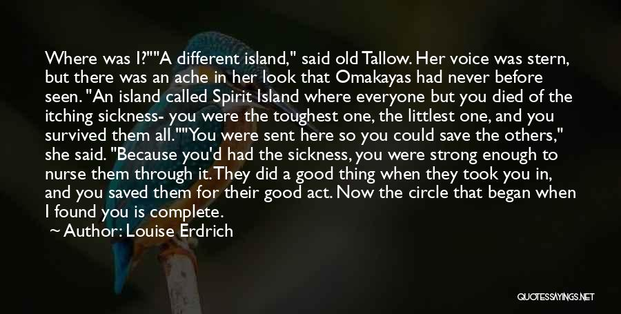Look For Good In Others Quotes By Louise Erdrich