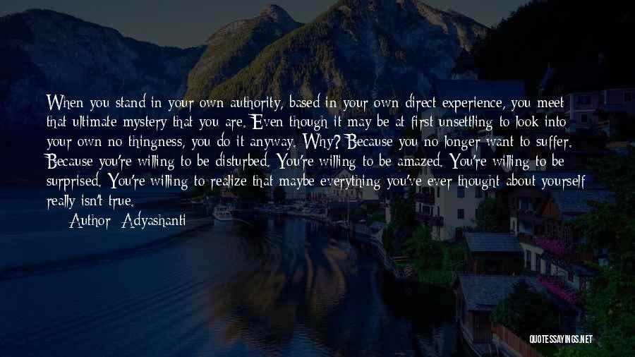 Look Into Yourself Quotes By Adyashanti