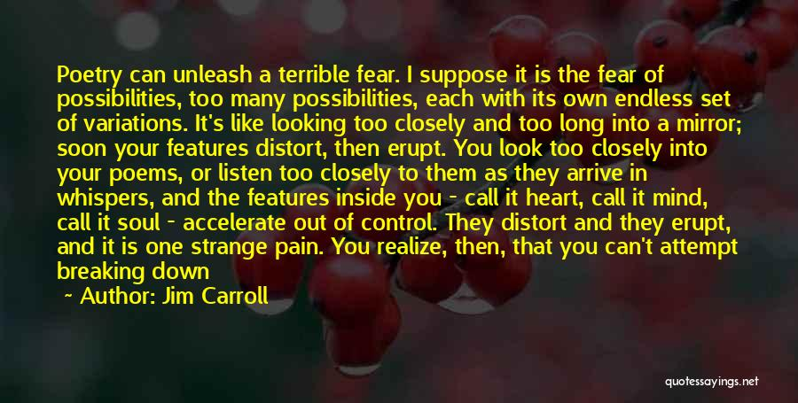 Look Into Yourself Quotes By Jim Carroll
