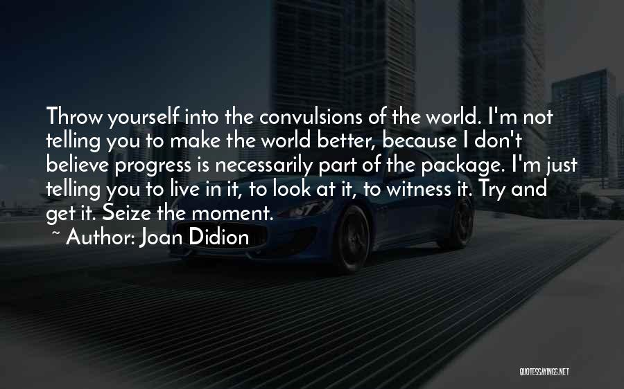 Look Into Yourself Quotes By Joan Didion