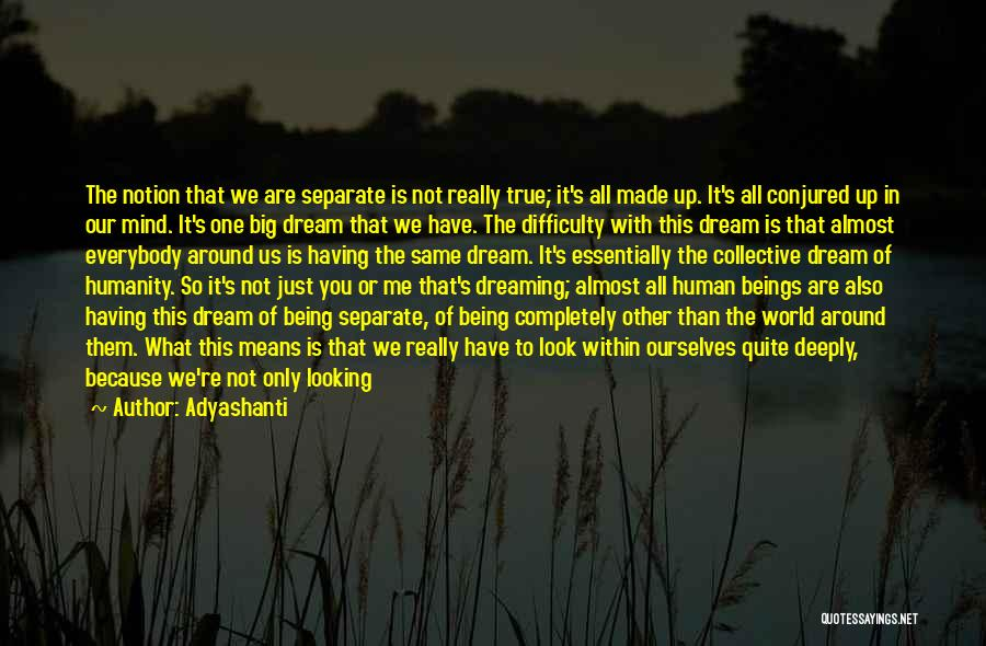 Look Within Quotes By Adyashanti