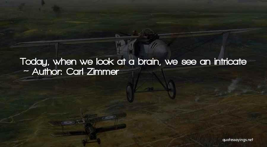 Look Within Quotes By Carl Zimmer