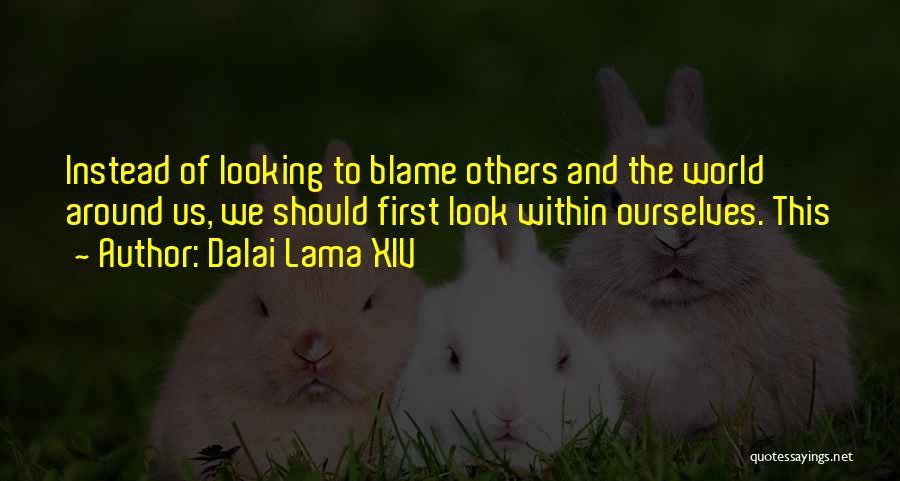 Look Within Quotes By Dalai Lama XIV