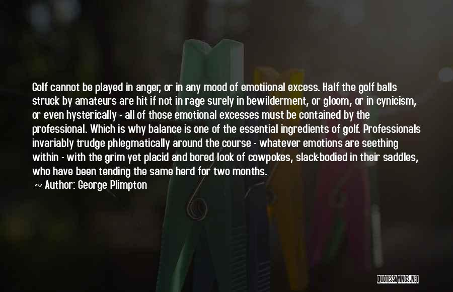 Look Within Quotes By George Plimpton