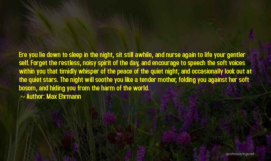Look Within Quotes By Max Ehrmann