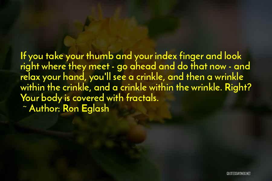 Look Within Quotes By Ron Eglash