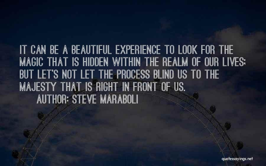 Look Within Quotes By Steve Maraboli