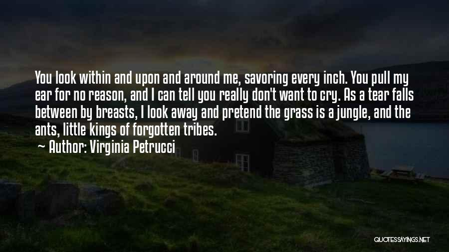 Look Within Quotes By Virginia Petrucci
