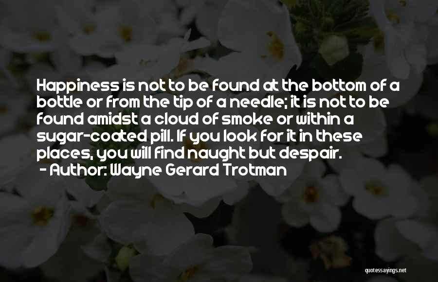Look Within Quotes By Wayne Gerard Trotman