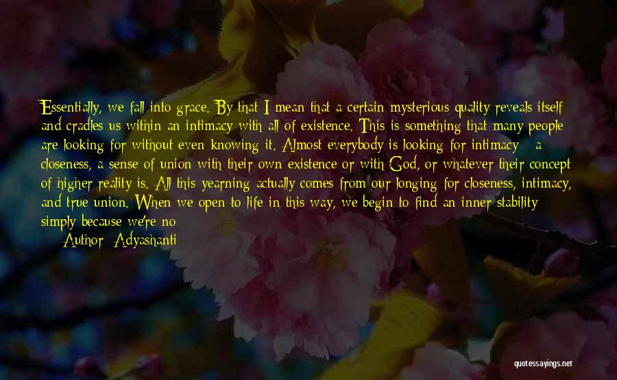 Looking For Something Quotes By Adyashanti
