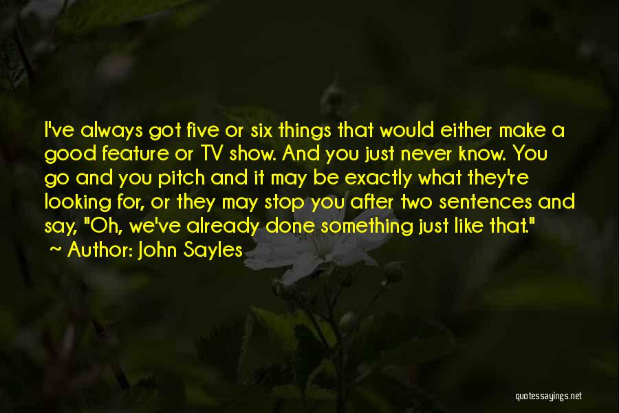 Looking For Something Quotes By John Sayles
