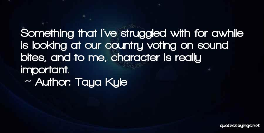Looking For Something Quotes By Taya Kyle
