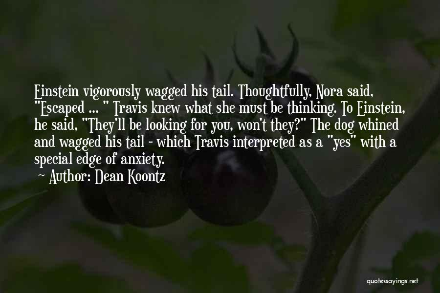 Looking For The Special Someone Quotes By Dean Koontz
