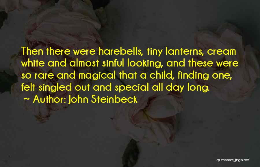 Looking For The Special Someone Quotes By John Steinbeck