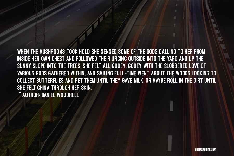 Looking Outside Quotes By Daniel Woodrell