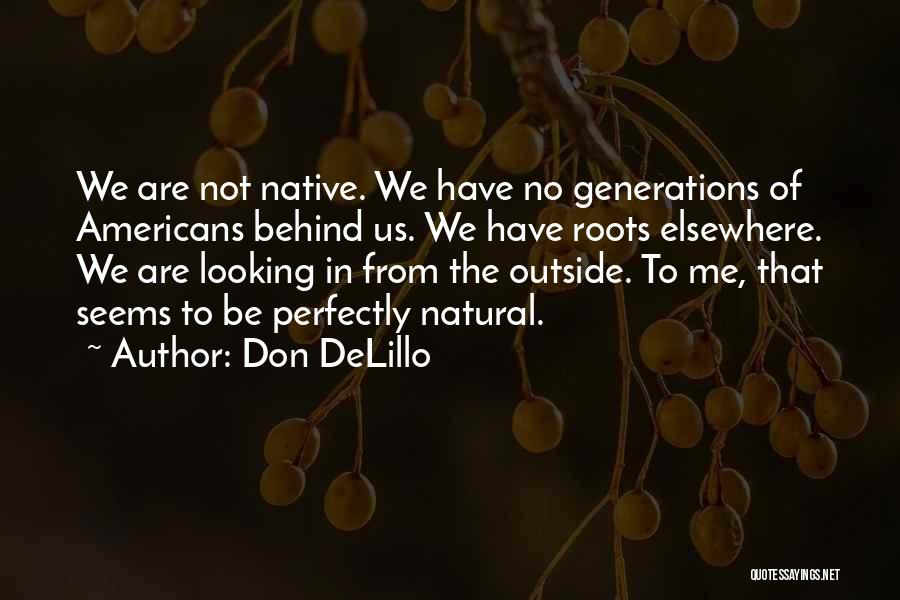 Looking Outside Quotes By Don DeLillo