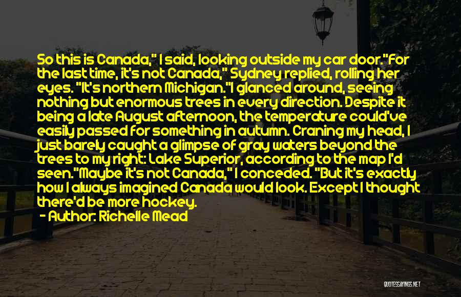 Looking Outside Quotes By Richelle Mead
