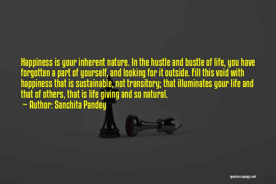 Looking Outside Quotes By Sanchita Pandey